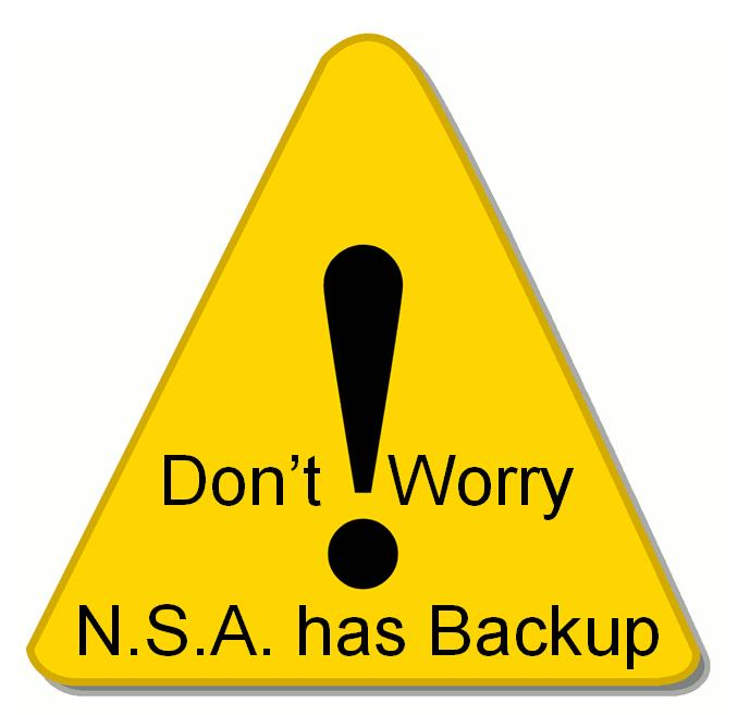 nsa has backup