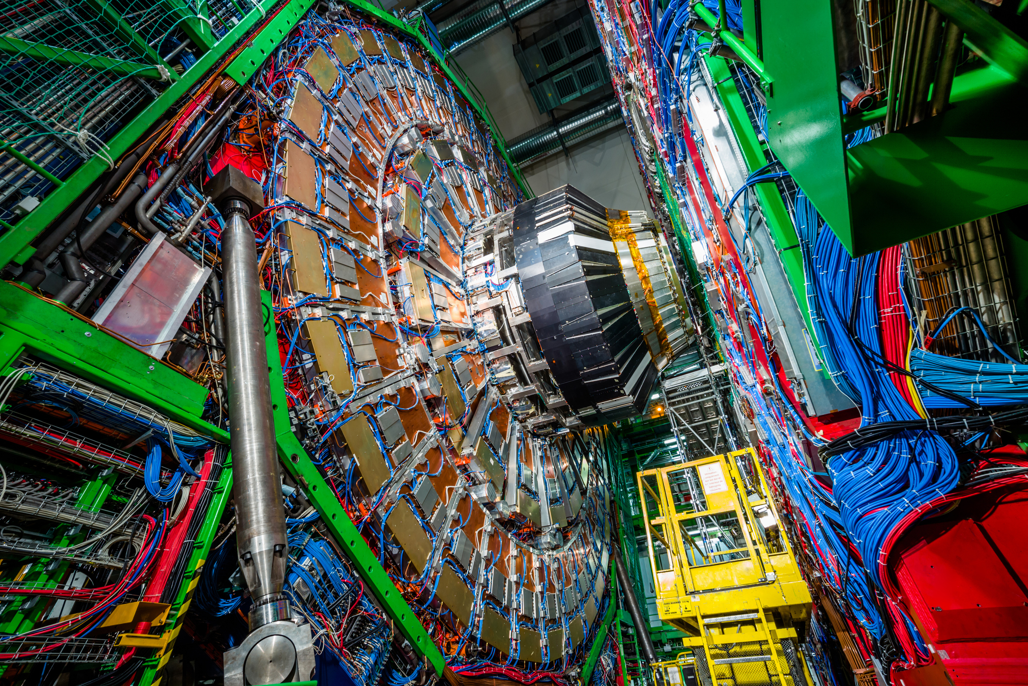 Muons Wobble But They Don't Fall Down